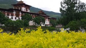 bhutan-asia-12